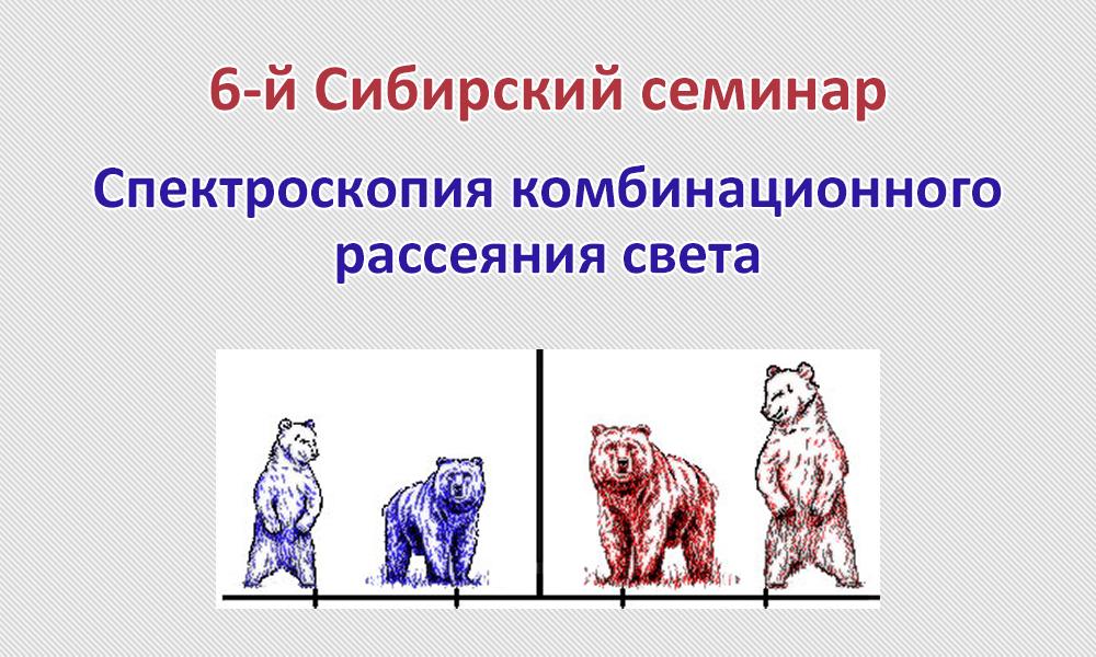 6 Сибирский семинар Спектроскопия комбинационного рассеяния света