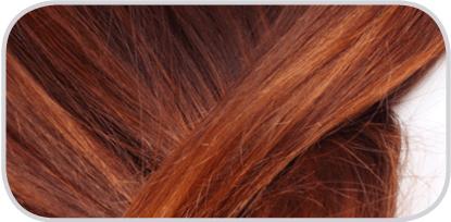 Определение содержания жизненно необходимых (эссециальных) и токсичных элементов в волосах