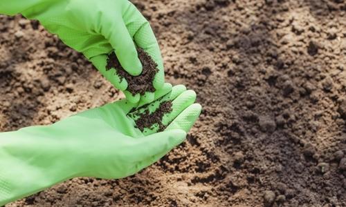 Контроль качества почвы