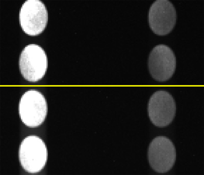 Enlarged part of the spectral image