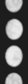 Увеличенная часть спектрального изображения