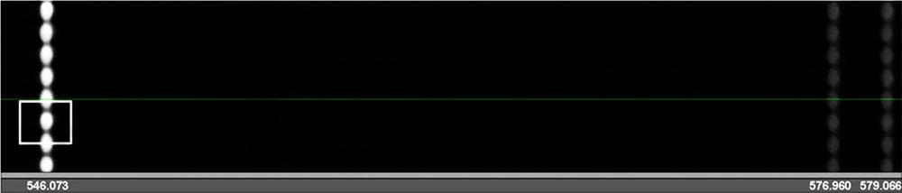 Спектральное изображение полученное на монохроматоре-спектографе MS3504i
