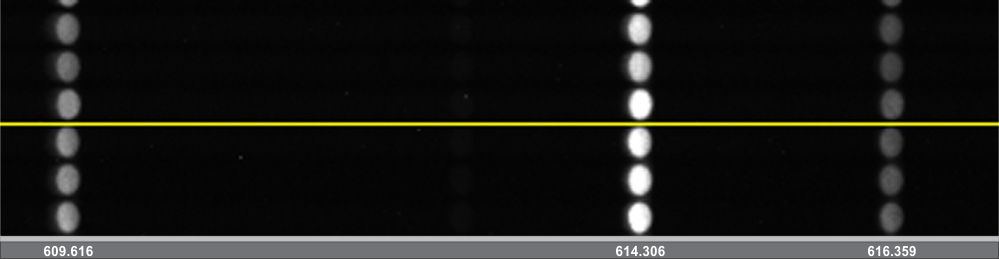 Spectral image obtained with monochromator-spectrograph MS5204i